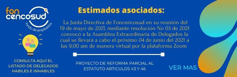 Convocatoria Asamblea Extraordinaria De Delegados 2021, Proyecto de Reforma Artículo 43-46 Estatuto.